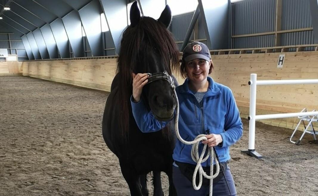 FØR JUL: Edle Holmin er leder i Volda rideklubb. Hun håper stallen vil stå klar før jul. Her er hun sammen med dølahesten sin, Thilda, i ridehallen.