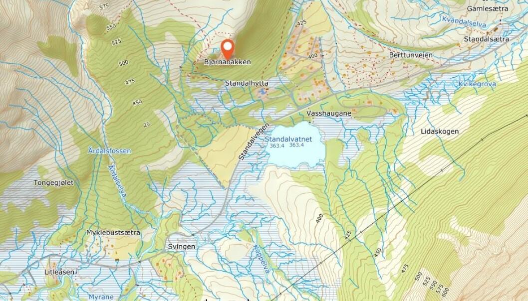 Fjellnakken i Ørsta har både blitt kalt Bjørnabakken, Bjørnanakken og Bjønnanakken. Nå er saken på høring.
