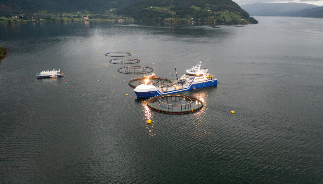 DAVIK: Gadus Group hevder de allerede har bidratt med positive, lokale ringvirkninger i Nordfjorden